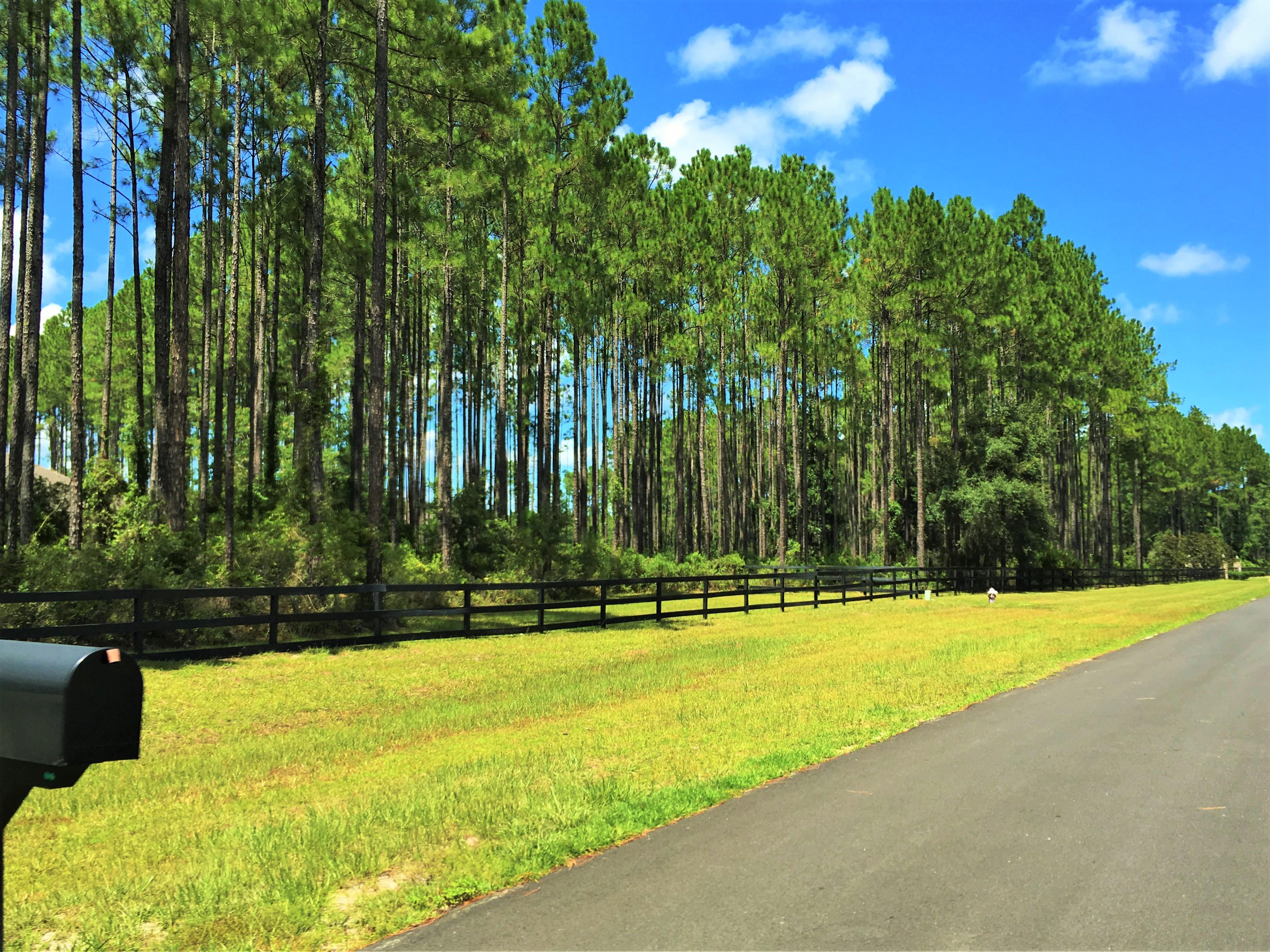 Whitelock Farms Homes for Sale St Johns, Florida, 32259