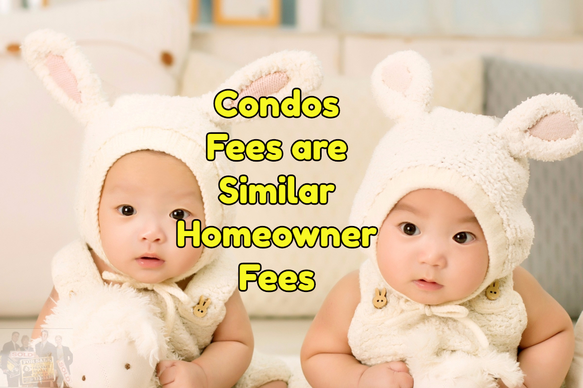 condo fees are similar to housing fees