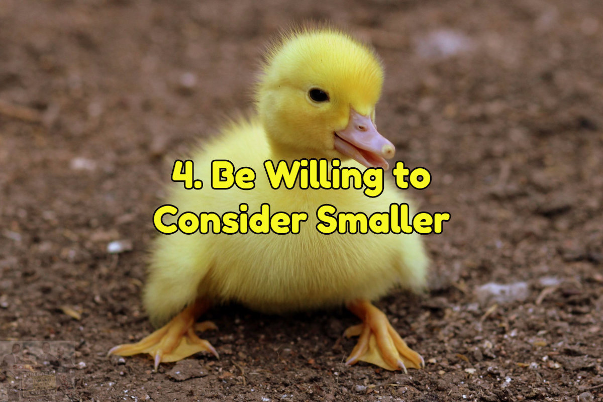 Be willing to start small with your home search